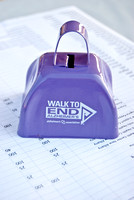 Walk to End Alzheimers 2013-0609