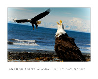 ANCHOR POINT EAGELS
